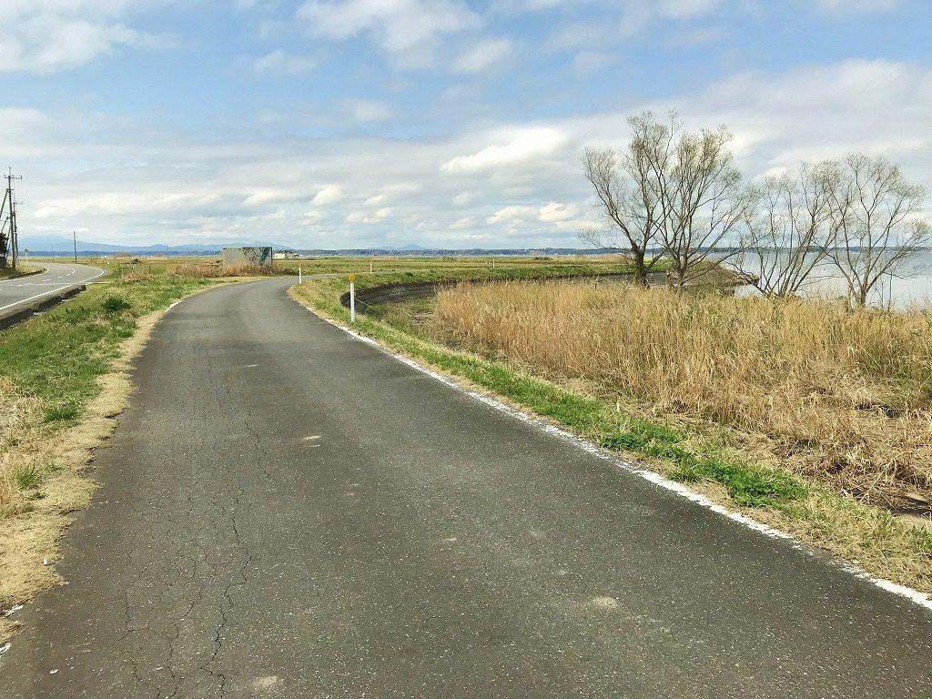 霞ヶ浦のサイクルロード