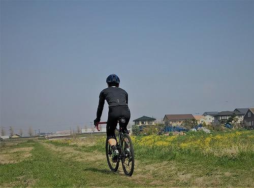 菜の花畑と自転車