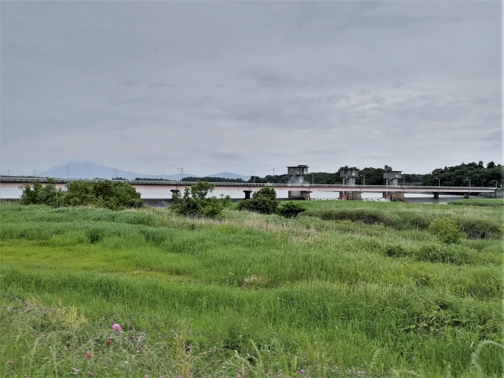 小貝川と福岡堰