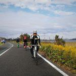 手賀沼沿いをロードバイクで走る